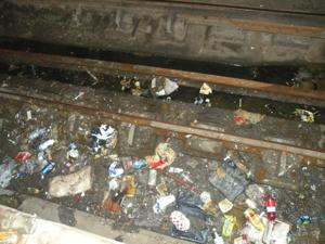 Oh rats! Rodents in Jamaica subway  2