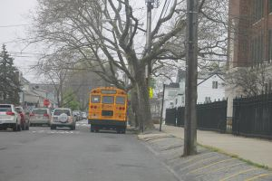 Trees damaged in Hurricane Sandy worry residents 1