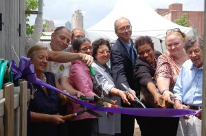 LIC Roots Garden marks expansion 1