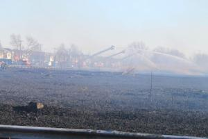 Spring Creek Park fire narrowly misses homes 1