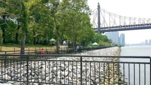 Seawall finally fixed at Queensbridge Park 1