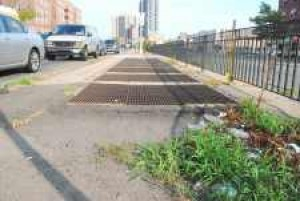 Queens Boulevard medians in disrepair
