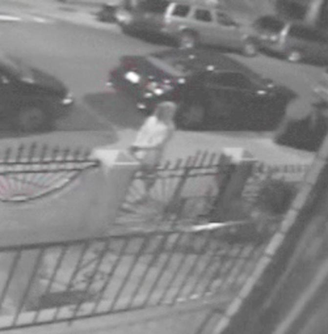 Woodhaven stabbing motive still unclear