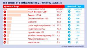 Jamaica, Queens Vill. face health challenges 2