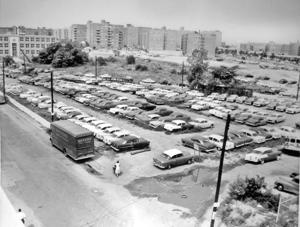 <p>Leftover 1955 Chevrolet cars from Luby Chevrolet parked on the lot at Austin Street and Yellowstone Boulevard in Forest Hills, Sept. 14, 1955.</p>