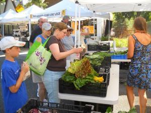 Farmers market out in Douglaston 1