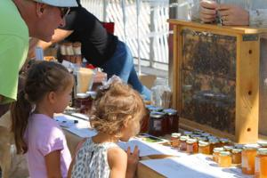 A taste of honey at Rockaway Beach