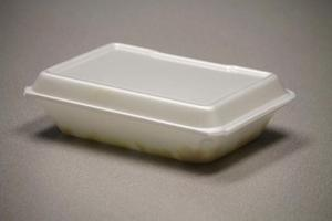 City Council votes to maybe ban Styrofoam 1