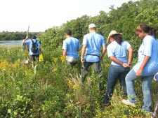 'BioBlitz' Participants Storm Jamaica Bay