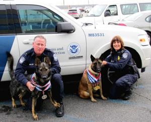 JFK drug dogs win big at competition 1