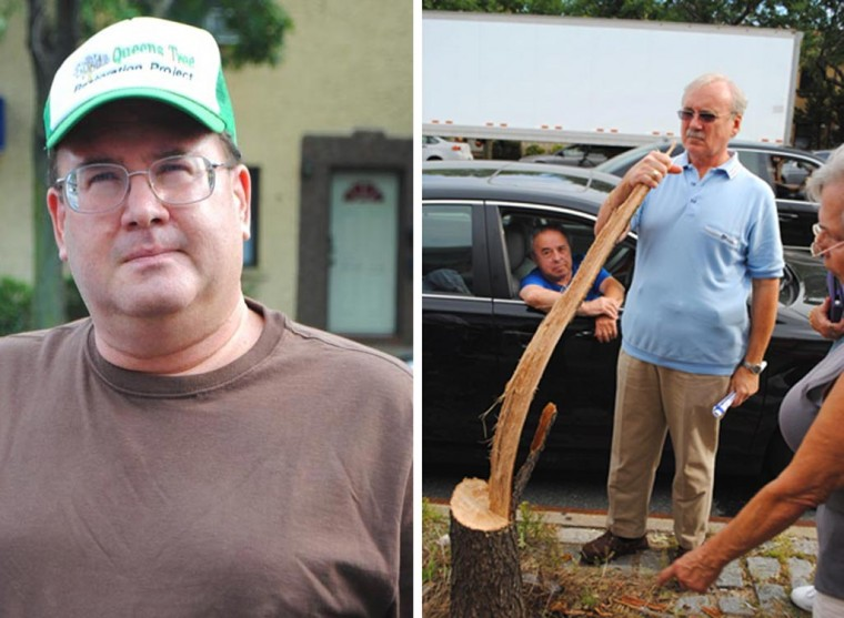 Residents appalled by three tree killings 1