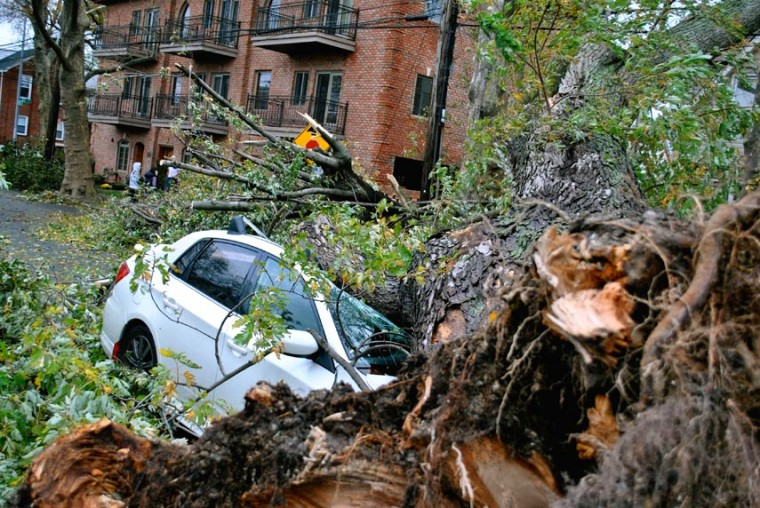 Hurricane Sandy spares Northeast Queens its worst 1
