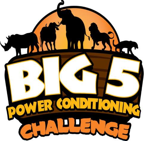 Big 5 Power Conditioning
