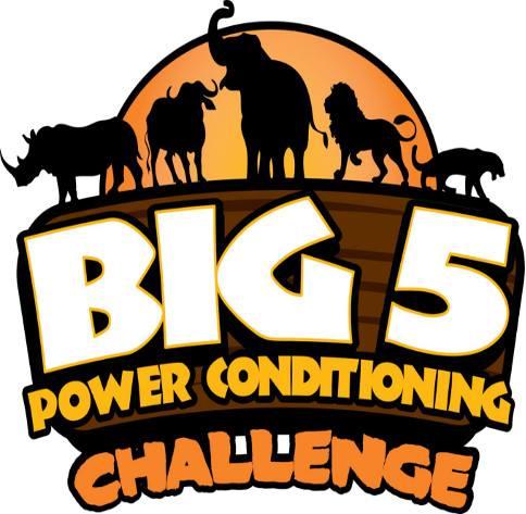 Big 5 Power Conditioning