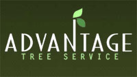 Advantage Tree Service
