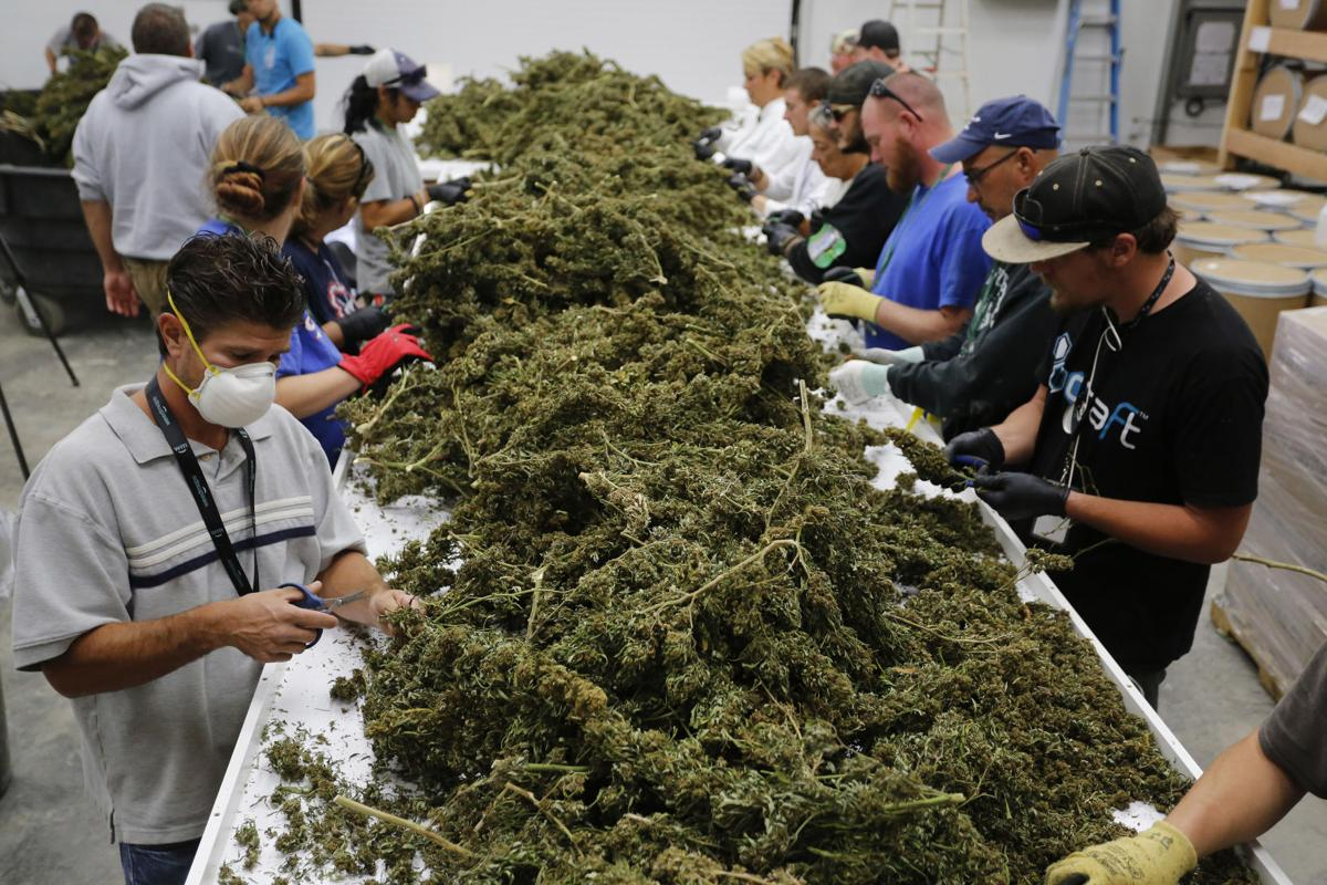 A look at the top issues facing states that are moving toward legalization: