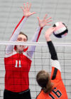 Knights bow out in state volleyball semifinals