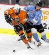 ECHL notes: Bussieres recalled to Iowa Wild