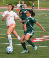 Alleman's title dreams fall short in state semifinal loss