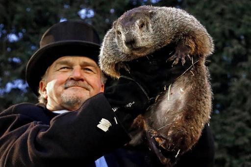 Go (Ground) Hog Wild! It's Groundhog Day