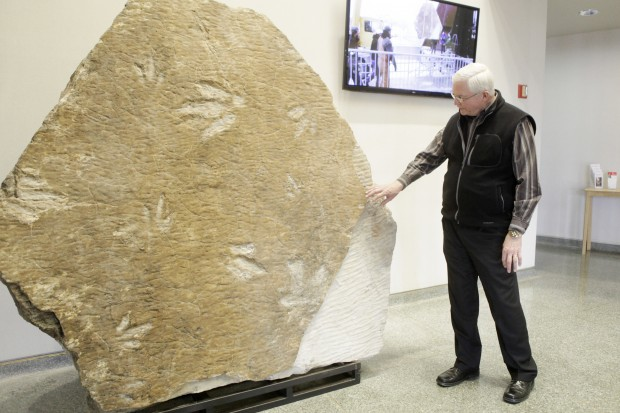 Theropod Dinosaur Footprint Fossil Installed At Journey Museum