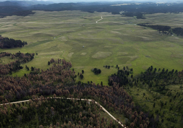 """Native American tribes have finalized the purchase of 437 acres of land north of Deerfield Lake  that is part of the property known as Pe'Sla. The land purchase adds to the 1,900 acres  purchased in 2012. Pe'sla is a sacred area considered by the Lakota  as the """"center and heart of everything.""""  Image is Courtesy of The Rapid City Journal."""