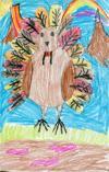 112515-turkey-top001AA.JPG