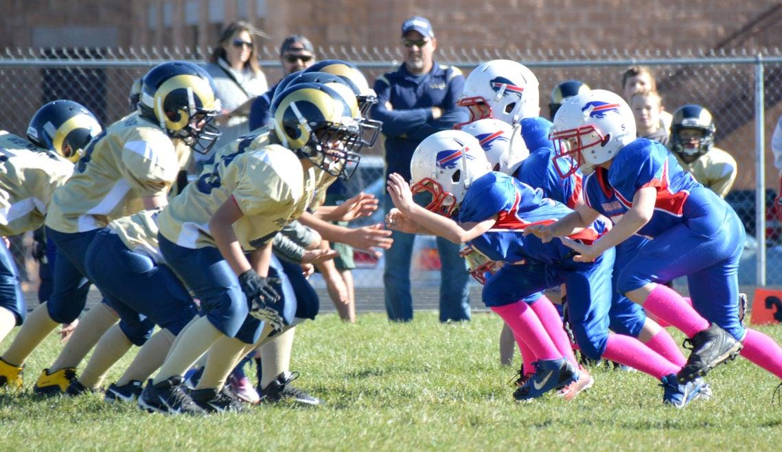 Pee wee football colorado springs