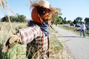 Autumn's artwork: Annual scarecrow festival a frightful delight in Stevensville