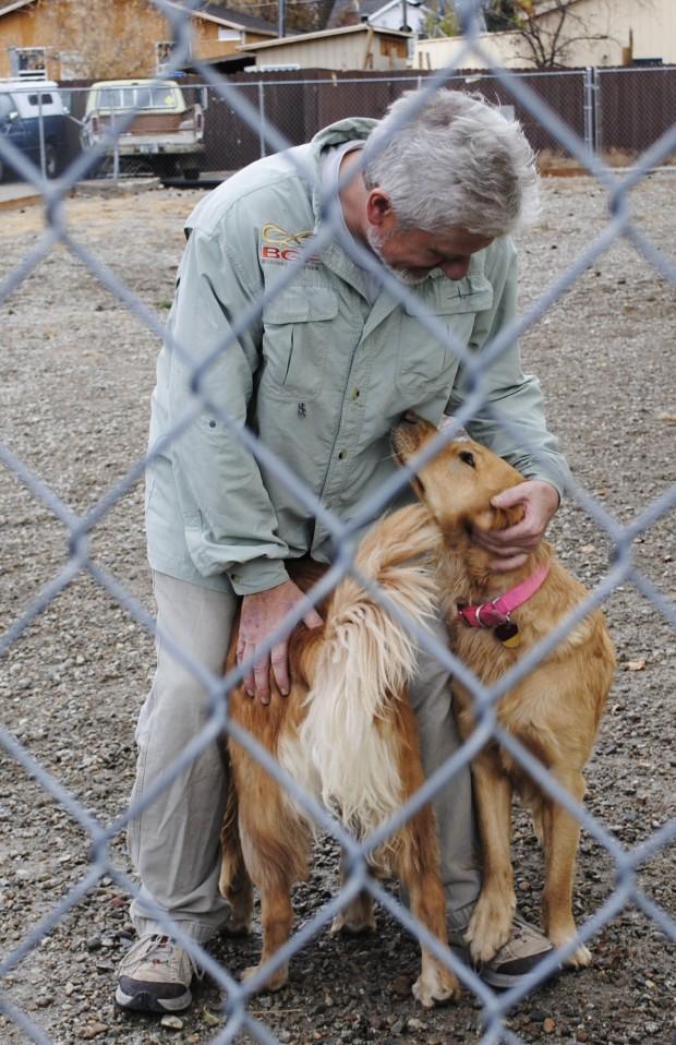 Dog Day Care Corvallis