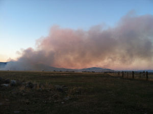 Wildfire burns nearly 400 acres outside of Polson