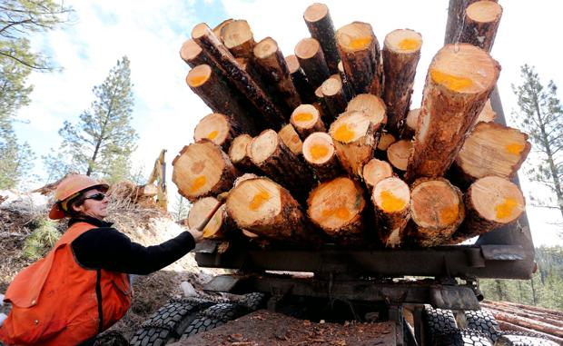 Hauling logs: Crews working to complete Horse Lick Timber Sale project before spring