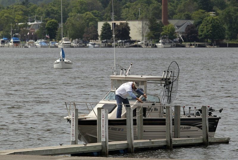 Alewife Decline Threatens Lake Michigans Salmon Fishery