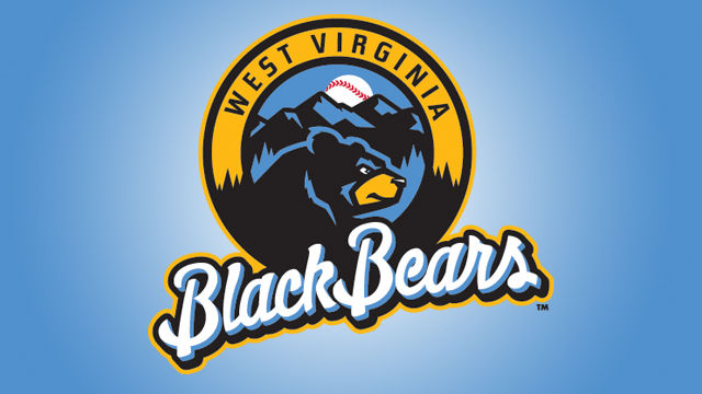 Black bear sports logo - photo#8