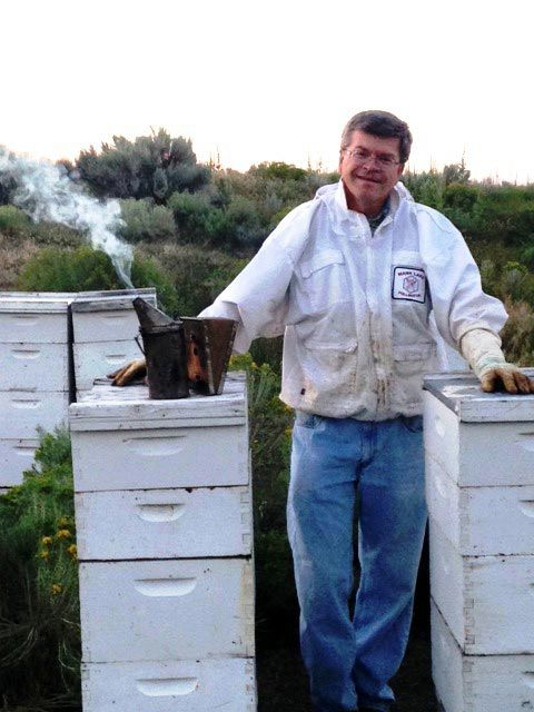 Local beekeeper to host beginner beekeeping class local news - Beekeeping beginners small business ...