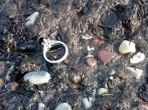 Ring on the beach