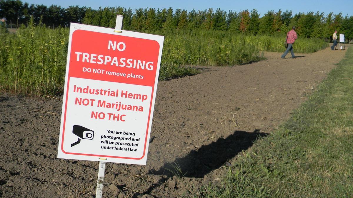 Hemp field warning
