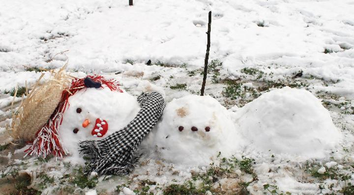 Snowman 8
