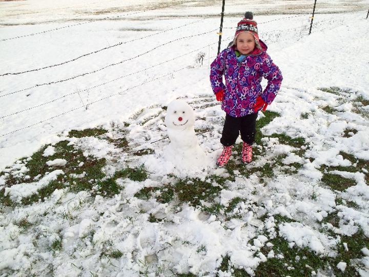 Snowman 22