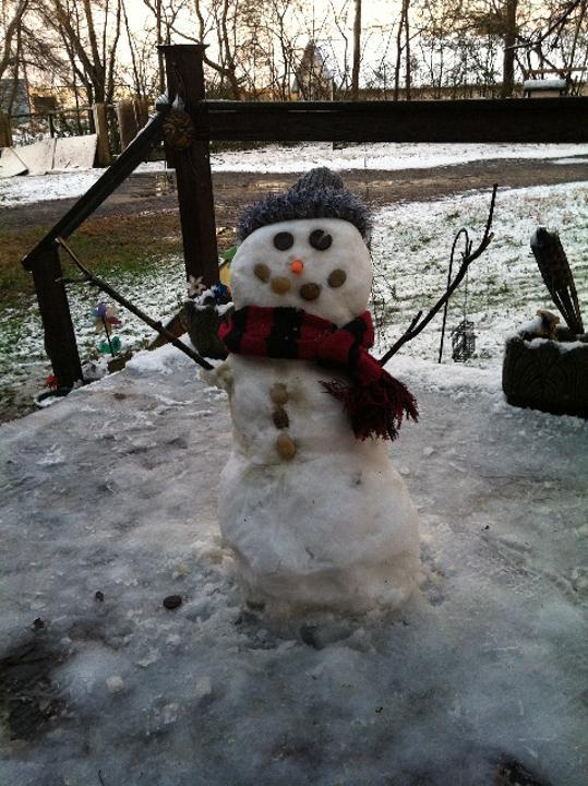 Snowman 27