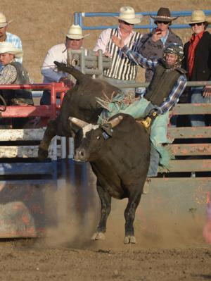 Elks Rodeo primed for generations of fun
