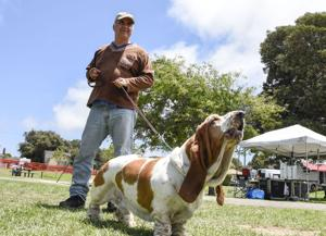 Dogs have their final day in Lompoc