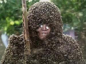 Raw: Man Breaks Bee-Wearing Record