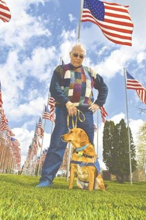 Image of a war veteran with a service dog.