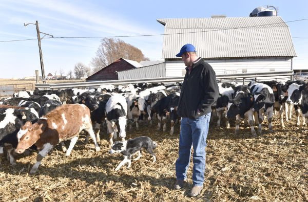 New water rule subjects Iowa livestock farms to inspections greater oversigh