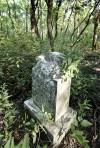 Abandoned Waterbury cemetery