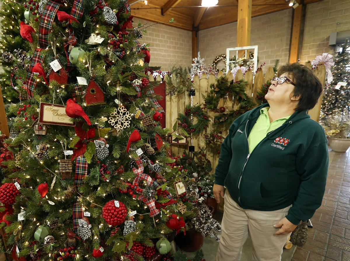 Fake Fir Artificial Christmas Trees Emphasize Warmth And Personality Siouxland Life