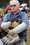 SML Bald Eagle set free