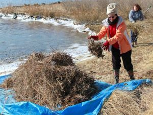Vounteers take part in CBEC cleanup