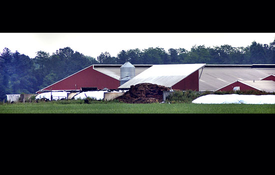 kennedyville men Maryland state police and fire crews recovered the bodies of three pennsylvania men early thursday from a manure pit at a kent county dairy farm police have tentatively identified the.